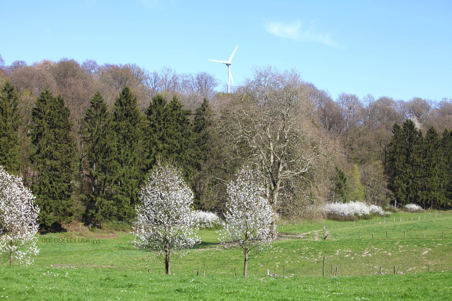 Belgien countryside with wind turbine